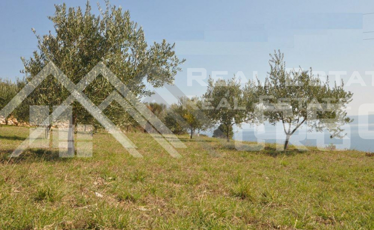 Farm land with beautiful sea view, for sale, Bol, Brac