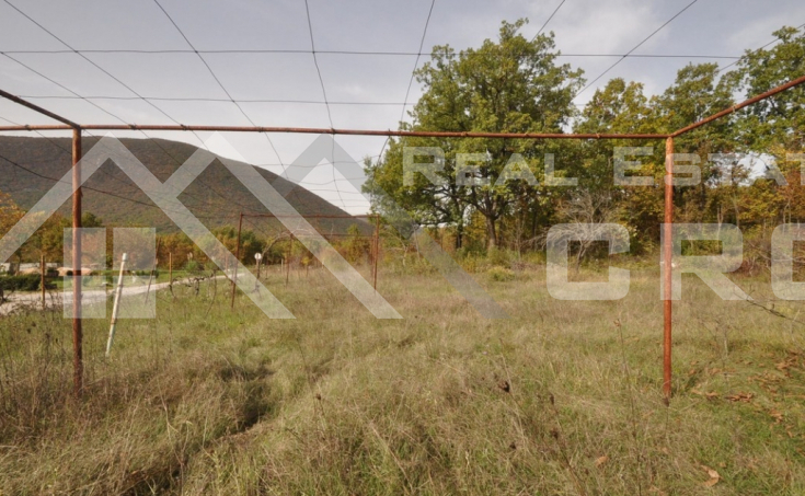 Old stone house with a garden for sale, Radosic, Sinj (2)