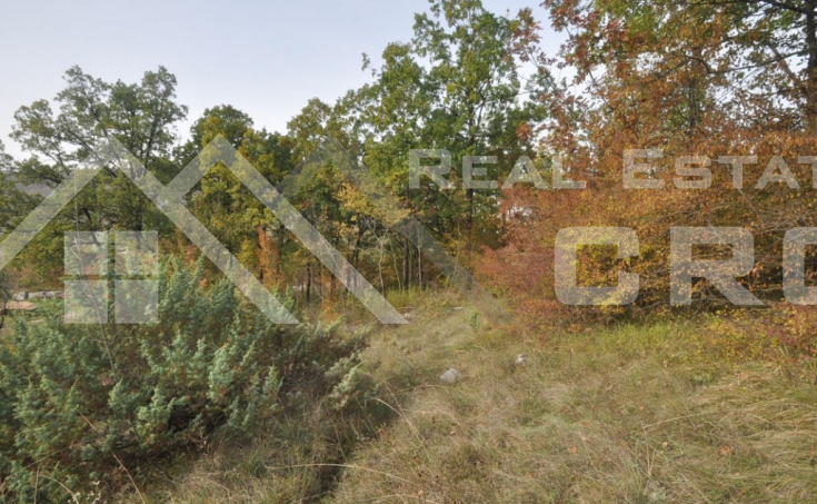 Old stone house with a garden for sale, Radosic, Sinj (4)