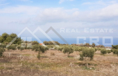 Farmland with a superb sea view for sale, Supetar (1)