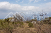 Farmland with sea view on Brac Island, for sale (1)