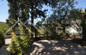 Seaview house for sale in nice location in Postira, Brac  (14)