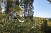 Seaview house for sale in nice location in Postira, Brac  (4)