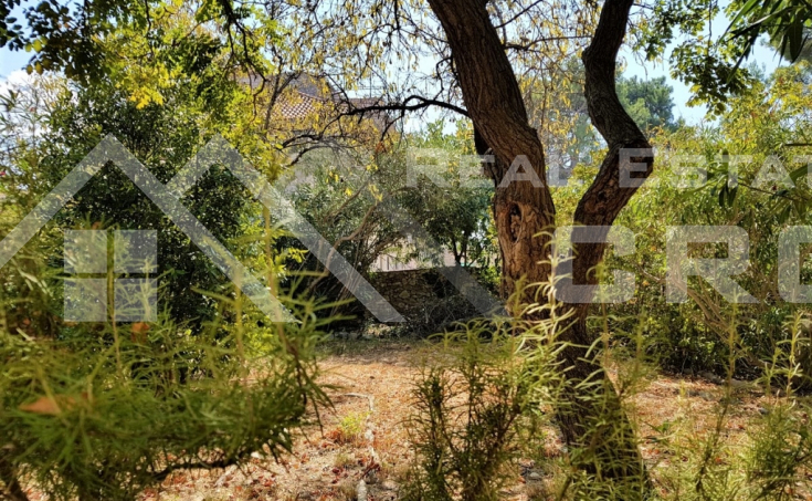Old stone house with garden close to the sea in Sutivan for sale  (223)