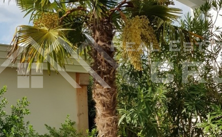 Brac properties – Modern two-bedroom apartment with beautiful garden for sale