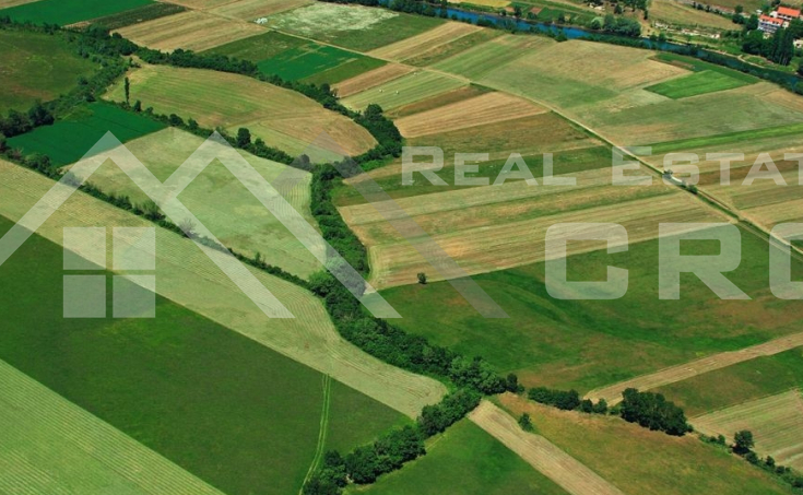 Land in Sinj – Arable farmland in Sinjsko polje (field), for sale