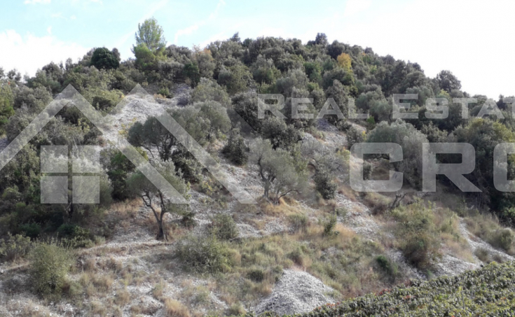 Brac properties – Farmland in an attractive location, Brac Island, for sale