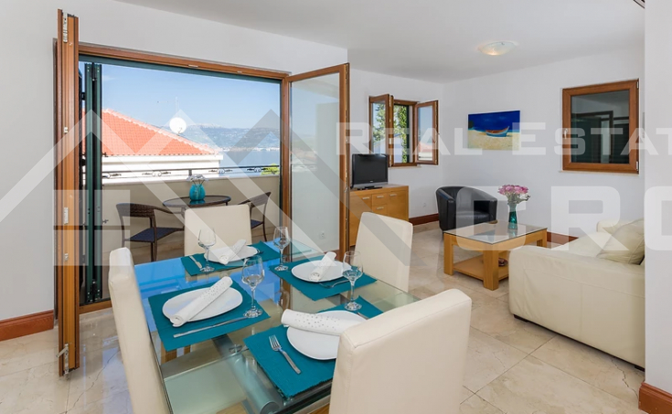 One bedroom furnished apartment with sea view (5)