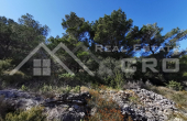 Farmland witha  charming stone house and wonderful sea view, for sale (2)