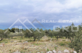 Farmland in an excellent location with sea view, for sale (1)