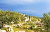 Farmland with a living unit and beautiful sea view, for sale (2)